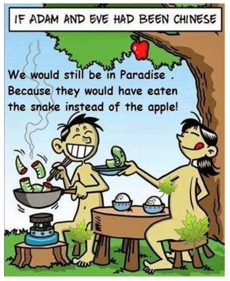 IF ADAM AND EVE WERE CHINESE...