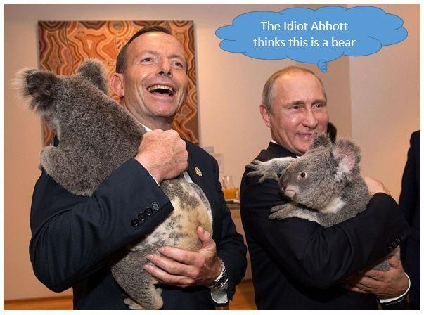 Abbott Putin Bear