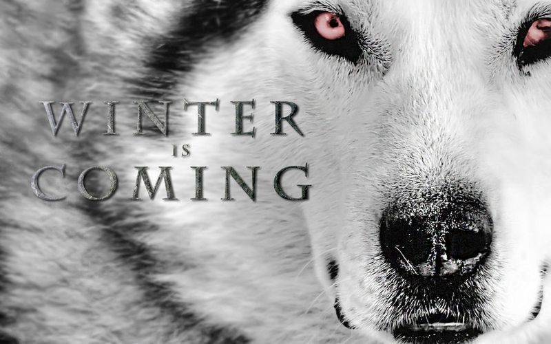 Winter_is_coming_by_figure_of_l-d541201
