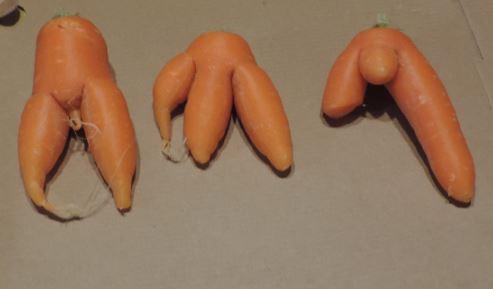 Strange Carrots