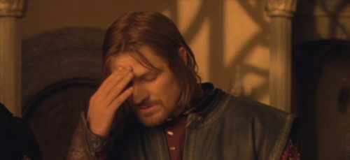 Boromir face palm