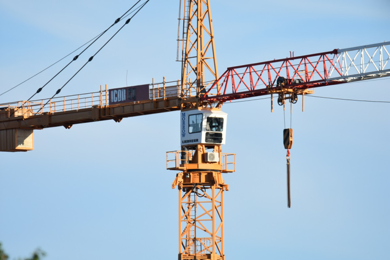 Crane on 600mm with Tamron 150-600mm