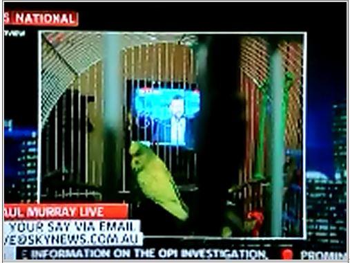Aristo on Sky News