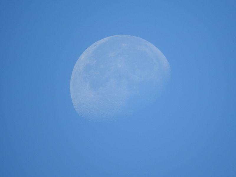 Daytime moon zoom
