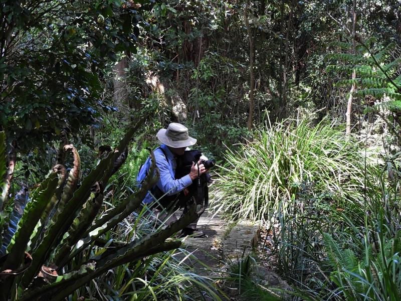 Thygo Rainforest Camera