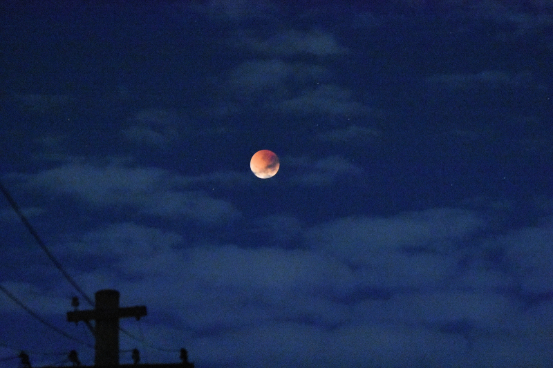 Blood Moon in Very Early Morning Sky