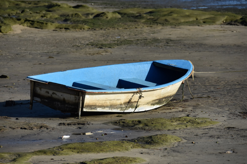 Boat on Mud 2
