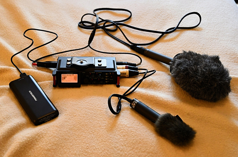 Tascam DR-70D Power Mics
