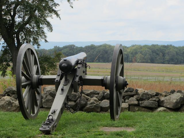 Cannon Facing the Field