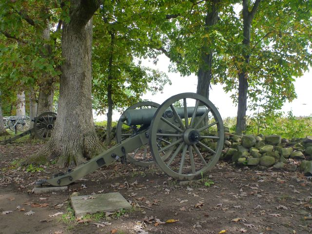 Cannon in the Tree Line